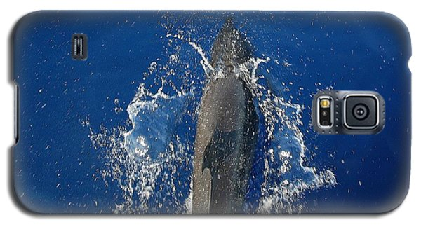 Dolphin Galaxy S5 Case by J R Seymour