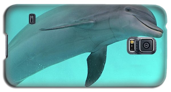 Dolphin Galaxy S5 Case by Sandy Keeton