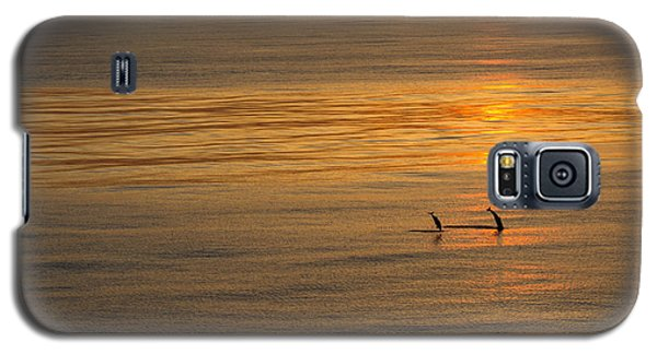 Dolphin Sunset Galaxy S5 Case
