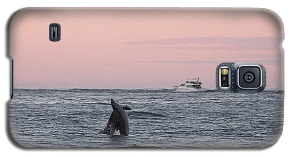 Dolphins At Play Galaxy S5 Case