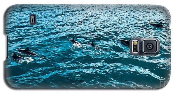Dolphins Off Of The Na Pali Coast Galaxy S5 Case