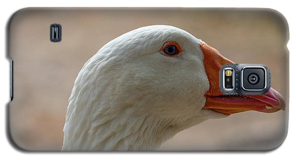 Domestic Goose Galaxy S5 Case