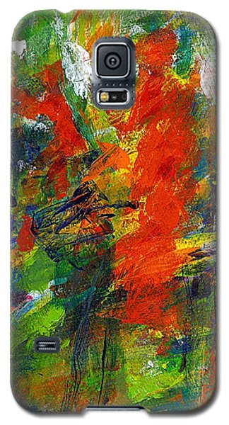Don Quichotte 2 Galaxy S5 Case by Jan Daniels