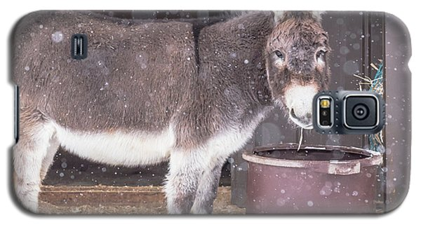 Donkey Watching It Snow Galaxy S5 Case
