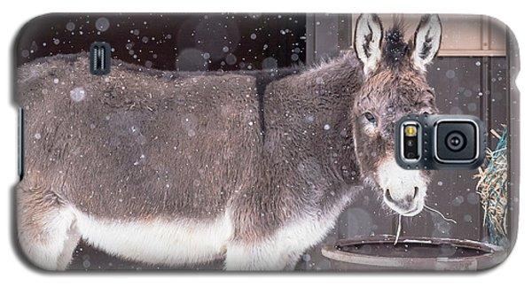 Donkey Watching It Snow Galaxy S5 Case