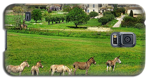 Galaxy S5 Case featuring the photograph Donkeys In Provence by Olivier Le Queinec