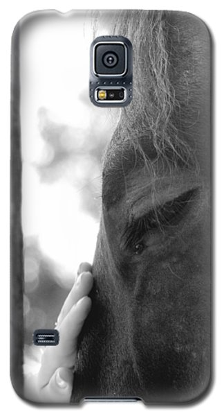 Don't Be Afraid Galaxy S5 Case by Donna Blackhall