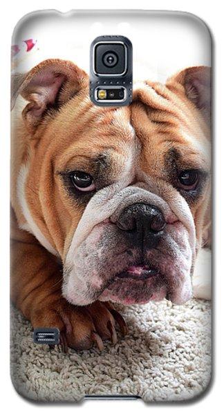 Don't Touch My Bone Galaxy S5 Case