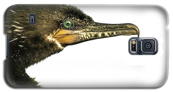 Double-crested Cormorant  Galaxy S5 Case by Robert Frederick