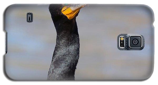 Double-crested Cormorant Galaxy S5 Case