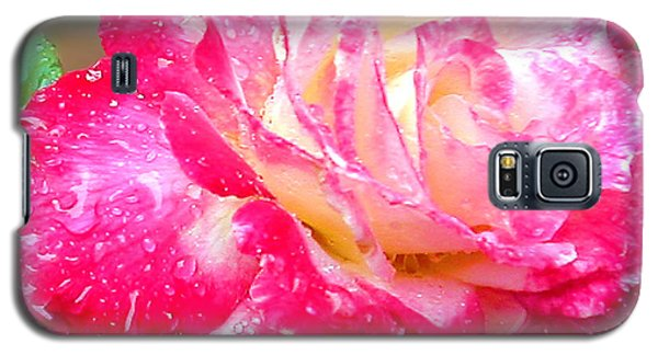 Galaxy S5 Case featuring the photograph Double Delight by Patricia Griffin Brett