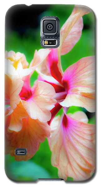 Double Peach Hibiscus Two Galaxy S5 Case