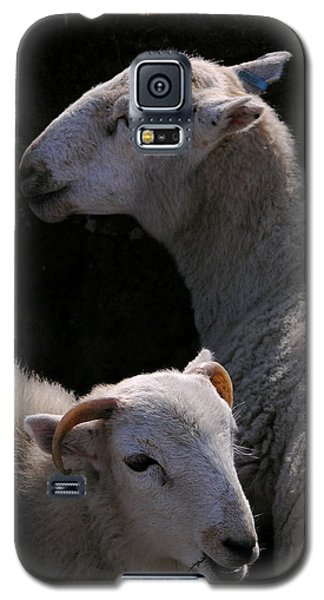 Double Portrait Galaxy S5 Case by Harry Robertson