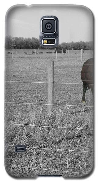 Galaxy S5 Case featuring the photograph Double Post by Dylan Punke