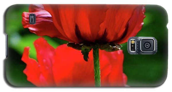 Double Red Poppies Galaxy S5 Case