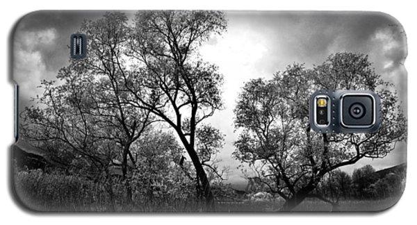 Double Tree Galaxy S5 Case