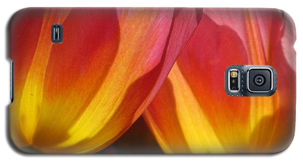 Double Tulips Galaxy S5 Case