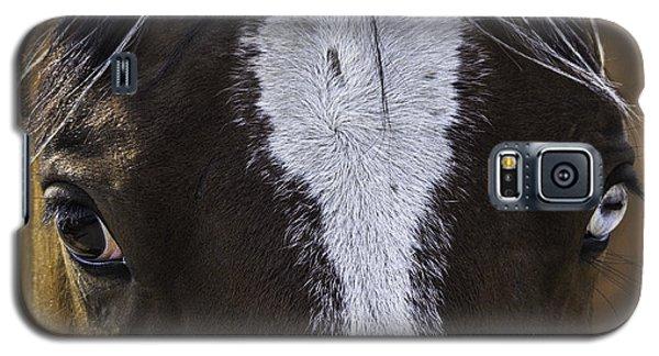 Double Vision Galaxy S5 Case by Elizabeth Eldridge