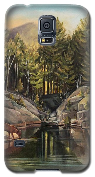 Down By The Pemigewasset River Galaxy S5 Case by Nancy Griswold