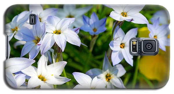 Downtown Wildflowers Galaxy S5 Case