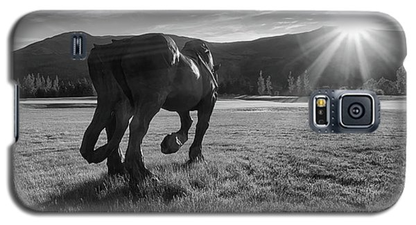 Draft Horse Statue Galaxy S5 Case