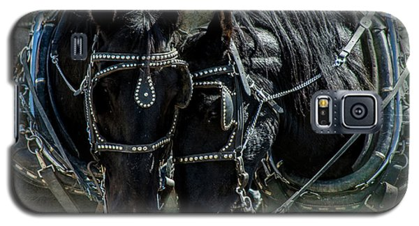 Galaxy S5 Case featuring the photograph Draft Horses by Mary Hone