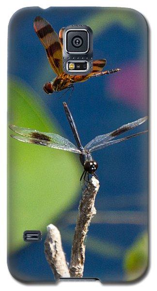 Dragon Fly 195 Galaxy S5 Case
