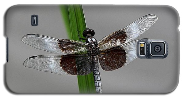 Galaxy S5 Case featuring the photograph Dragon Fly by Jerry Battle