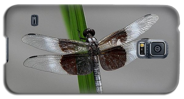 Dragon Fly Galaxy S5 Case