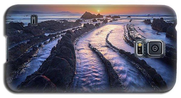 Dragon Lair Galaxy S5 Case