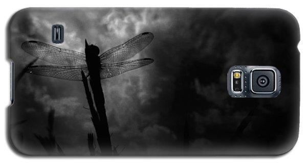 Dragon Noir Galaxy S5 Case by Tim Good