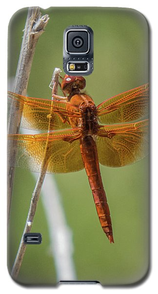 Dragonfly 10 Galaxy S5 Case