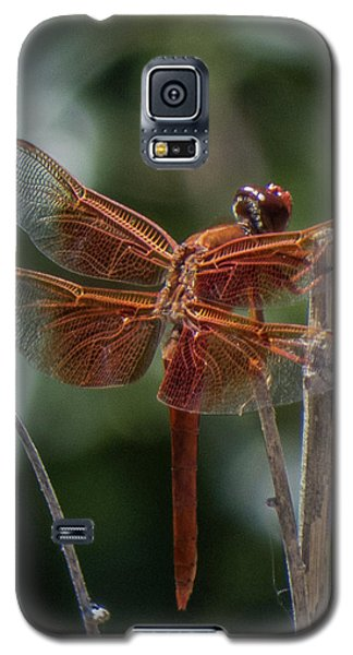 Dragonfly 9 Galaxy S5 Case
