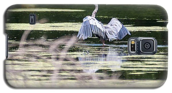 Galaxy S5 Case featuring the photograph Dragonfly And Great Blue Heron by Edward Peterson