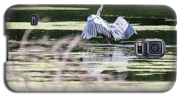 Dragonfly And Great Blue Heron Galaxy S5 Case