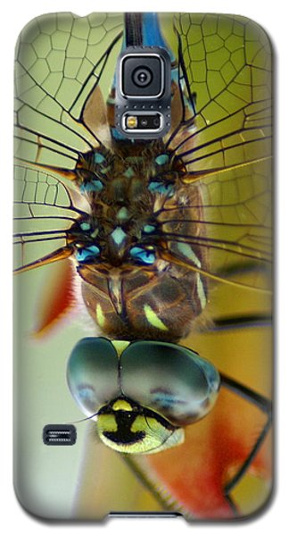 Dragonfly In Thought Galaxy S5 Case