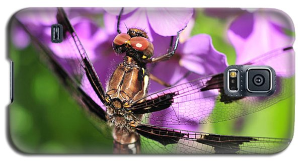 Dragonfly Galaxy S5 Case by Joe  Ng