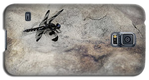 Dragonfly On Solid Ground Galaxy S5 Case