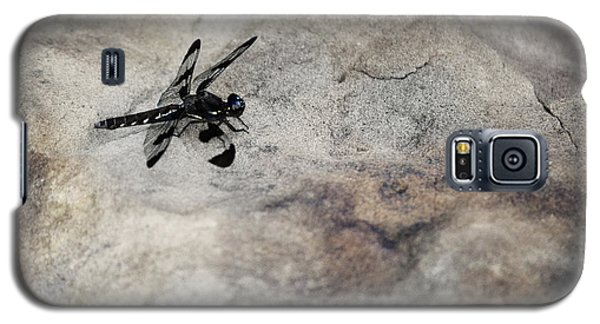 Dragonfly Landed On The Rock Galaxy S5 Case