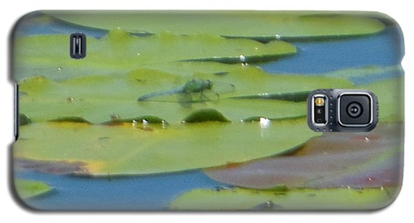 Dragonfly On Lily Pad Galaxy S5 Case