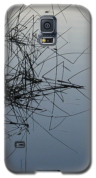 Dragonfly Reflections Galaxy S5 Case