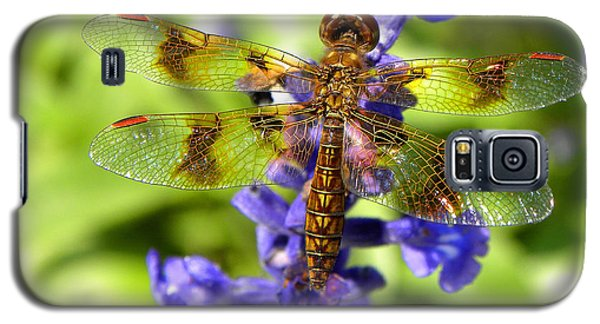 Galaxy S5 Case featuring the photograph Dragonfly by Sandi OReilly