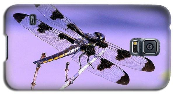 Dragonfly Galaxy S5 Case by Susan  Dimitrakopoulos