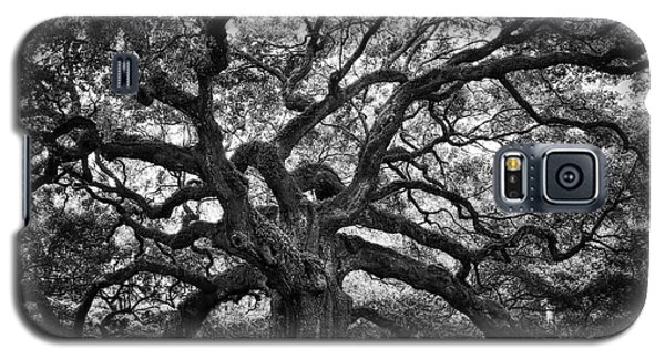 Dramatic Angel Oak In Black And White Galaxy S5 Case