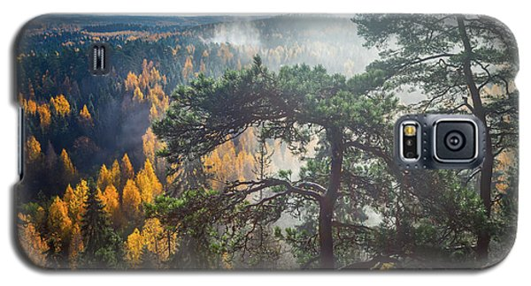Dramatic Autumn Forest With Trees On Foreground Galaxy S5 Case