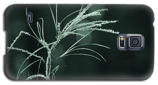 Galaxy S5 Case featuring the photograph Dream Catcher by Mary Amerman