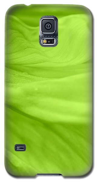 Dream Green Galaxy S5 Case