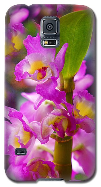 Galaxy S5 Case featuring the photograph Dream Of Spring by Byron Varvarigos