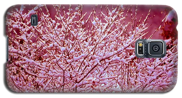Galaxy S5 Case featuring the photograph Dreaming In Red - Winter Wonderland by Susanne Van Hulst