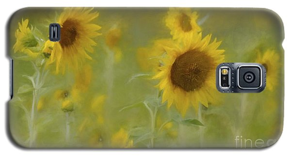 Galaxy S5 Case featuring the photograph Dreaming Of Sunflowers by Benanne Stiens